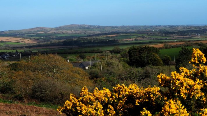 A view of Godolphin Hill