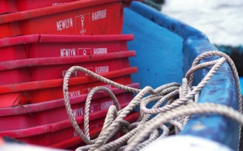Crates and ropes