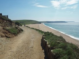 Path and Loe Bar