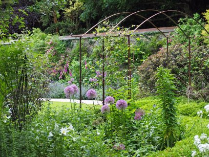Iron pergola and alliums