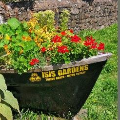 isis garden (1)
