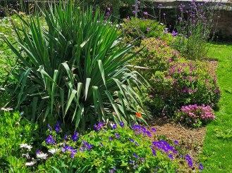 isis garden (11)