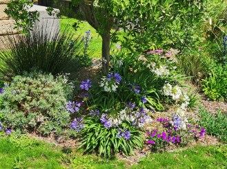 isis garden (12)