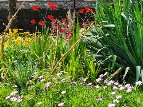 isis garden (6)