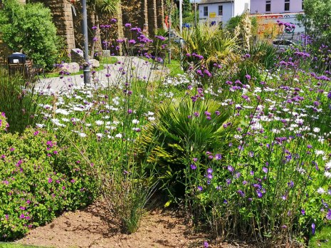 isis garden (9)