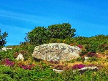 rocks (3)