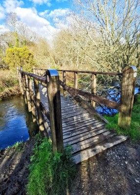 Wooden Troll Bridge